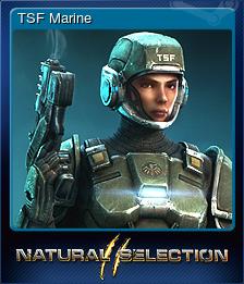 TSF Marine